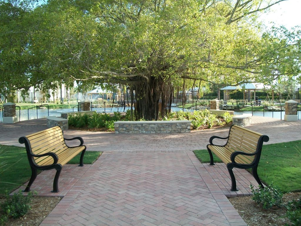 Outdoor benches in park with greenery